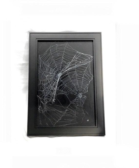 Real Spider Web,  Preserved Spider Web, Framed Spider Web, Spider Web Art, Spider Taxidermy, Real Nature Decor, Gothic Home Decor, Dark Art
