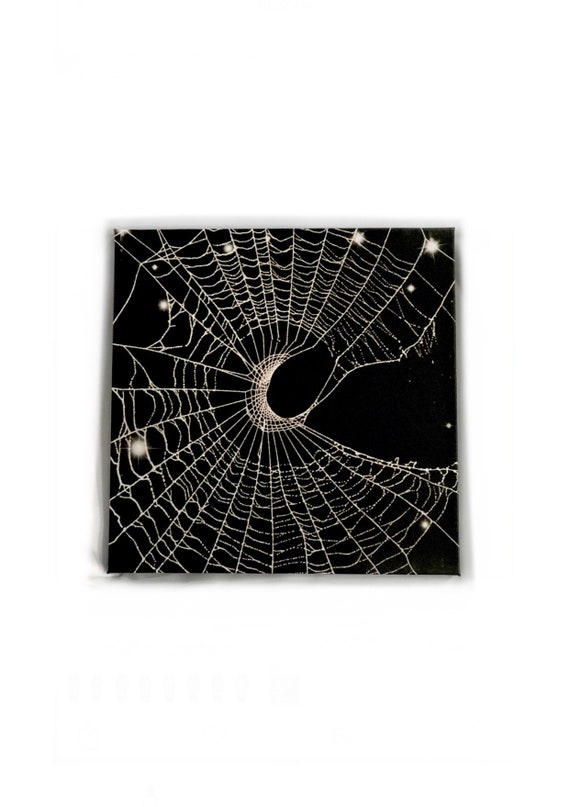 Spider Web, Halloween Decor, Framed Web, Gothic Decor, Spider Web Art