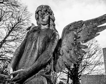 UNTITLED - Woodlawn Cemetery, Queens NY. 2014. photograph by Nathaniel Shannon