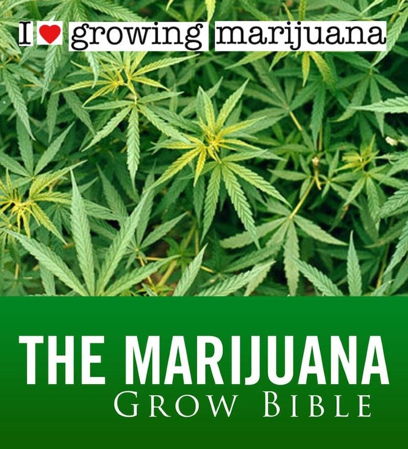Marijuana Ebook S