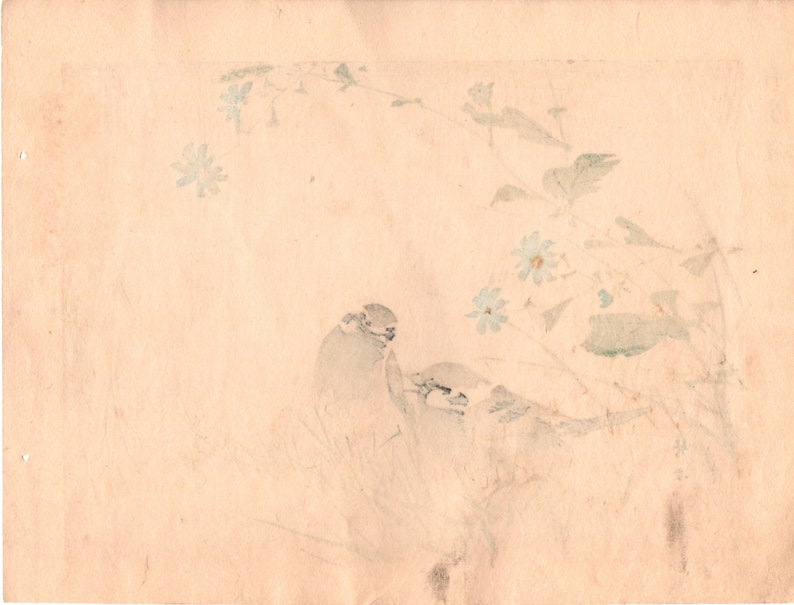 Sparrow. 1899 Kishi Chikudo