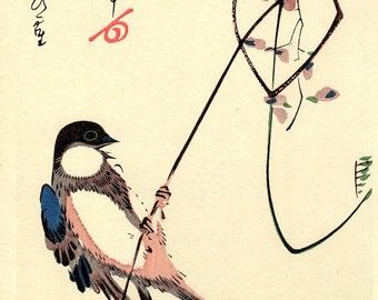 "Japanese Ukiyo-e Woodblock print, Ando Hiroshige, "" White-cheeked Bird and Wisteria"""