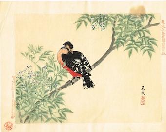 "1894, Japanese Woodblock print, antique, Matsumura Keibun, ""Woodpecker"""
