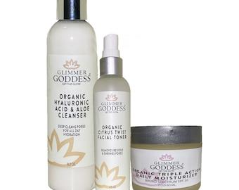 Organic Skin Care Set Anti-Aging Starter Kit - Vegan Skincare to Hydrate, Balance & Repair (Cleanser, Toner, Daily Moisturizer)