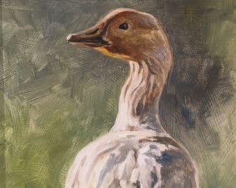 Snow Goose, small oil painting of a wild snow goose by Canadian Artist Kindrie Grove