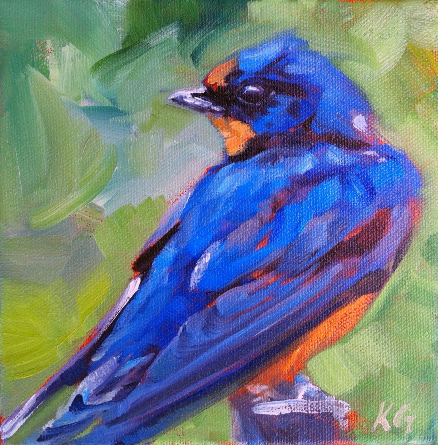 Barn Swallow limited edition art print of a bird by artist ...
