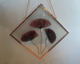 """Real Pressed Flower Wall Hanging   Red Poppy's   8"""" Square Glass with Copper Edging   Botanical Home Artwork Decor"""