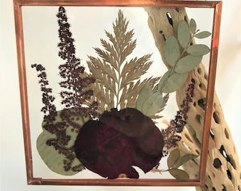 """Real Pressed Flower Wall Hanging   Black Bacarra Rose, Burgundy Astilbe, Eucalyptus, Fern   5"""" Square Glass with Copper Edging   Botanical"""