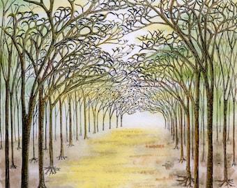Avenue Tree Print, Pen Ink Trees, Watercolour Tree Print, Sunlit Avenue Trees, Signed Tree Print, Abstract Tree Art, Bird and Tree