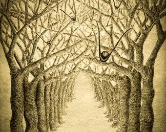 Pen and Ink Drawing - Tree Art Print - Bird Art - Watercolour Print - Signed Art Print - Sepia Print - Melanie Colletta Art -