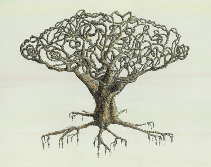 Botanical Art - Botanical Illustration - Tree Print - Pen and Ink Drawing - Watercolour Print - Signed Art Print - Tree Art