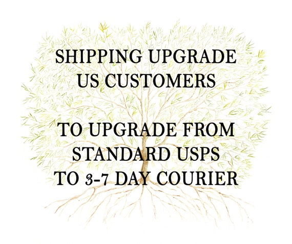US SHIPPING upgrade - Upgrade from standard USPS delivery to 3-7 working day courier