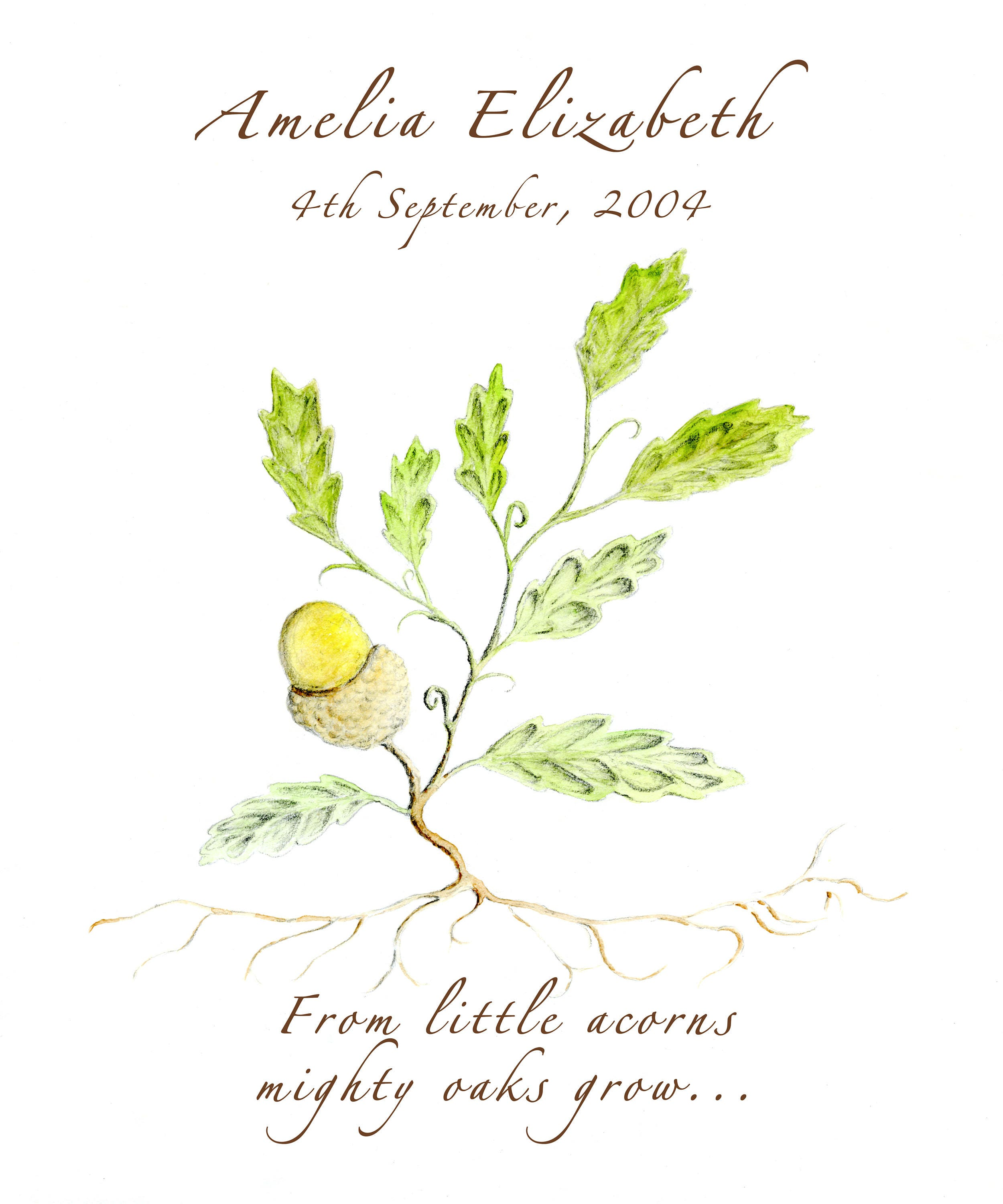 From Little Acorns Mighty Oaks Grow A Perfect Gift To Celebrate A New