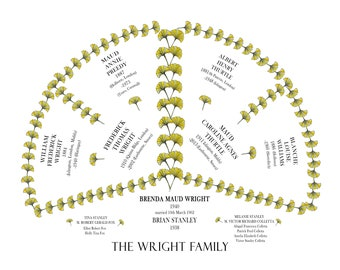 Ancestral Fan Chart, Personalised Family Tree, Genealogy Print perfect gift for Grandparents or Parents Featuring 2 generations of ancestors