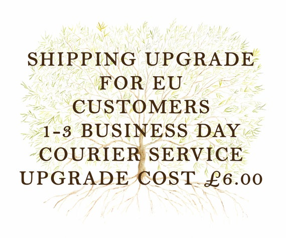 EU Shipping Upgrade -  1-3 business day Courier Service
