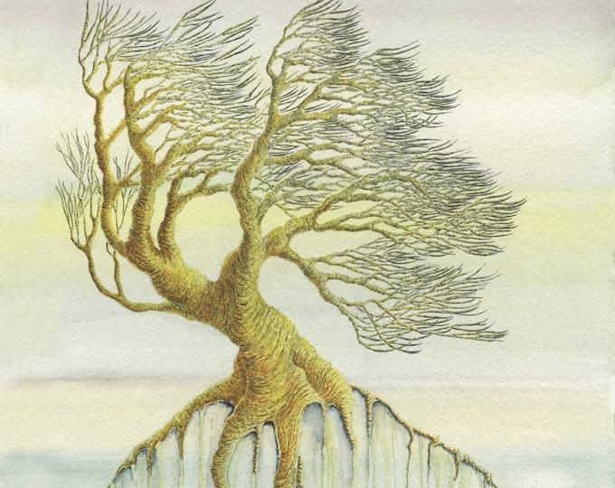 Tree Print - Watercolour Print - Pen and Ink Drawing - Wall Art - Signed Art Print - Giclee Art Print - Botanical Print - Botanical Art