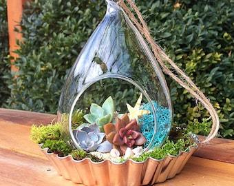 Hanging terrarium/succulent terrarium/succulent planter/beach theme/succulent garden/succulent wedding decor/moss terrarium/air plant