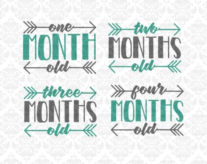 Month Shirt Svgs, Month Set, New Baby Svg, Birthday Svg, Monthly baby svg, Monthly Baby Shirt Svg, Arrow svg, Infant Svg, Infant Month Svg