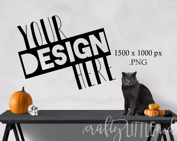 Mockup Mockups Halloween Cat Pumpkin Blank Wall Clear Wall Picture of Wall PNG Styled Stock Photo Set Skull Design Blank Canvas Frame Wall
