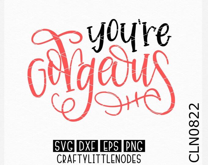 You're Gorgeous Svg, Hand Lettered Svg, Mug Svg, Love Svg, Couple Svg, Hand Writting Svg, Hand Written Svg, Cricut FIles, Silhouette Files