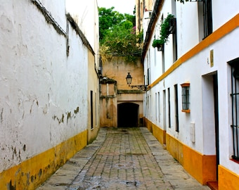 Romantic Alley in Seville | Spain Photography