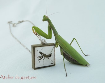 "Jewelry Silver/wood ""Mantis"" pierced (sawed by hand) unique!"