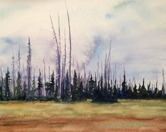 Pine tree painting, Rainier national park, Pacific Northwest, tree painting, trees in Meadow, watercolor trees, tree watercolor, Fir trees