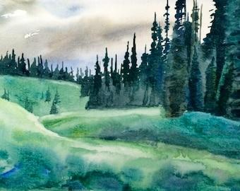 Rainier, rainier national park, rainier Meadow, national park painting, pine tree painting, pine trees, Watercolor trees, tree painting