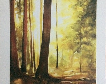 Forest watercolor, forest painting, forest sunlight, sun in trees, watercolor landscape print, watercolor print, forest print, tree painting
