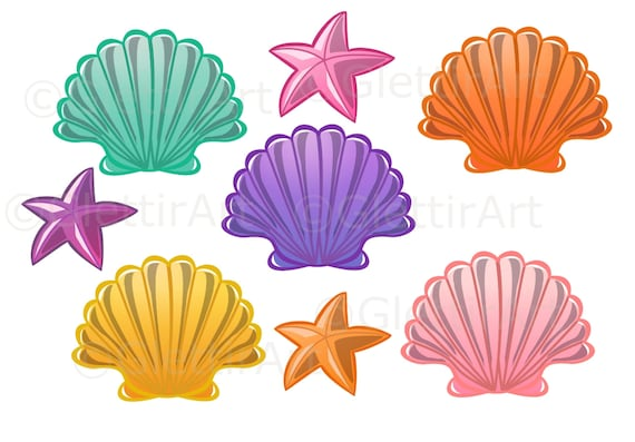 seashell clipart sea shell clipart for personal and etsy