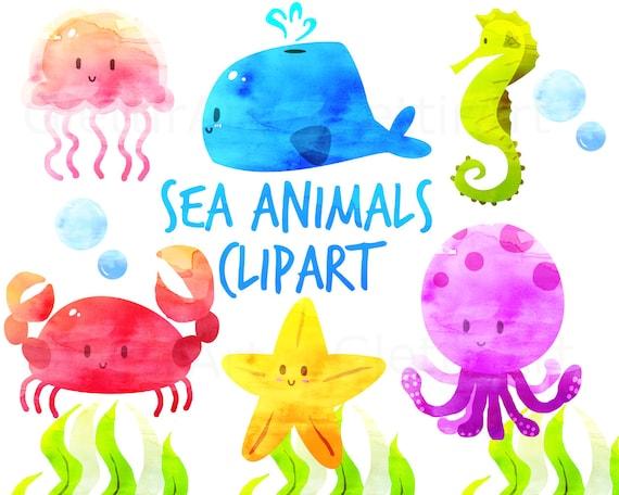 16 Endangered Marine Animals | Endangered Species Day