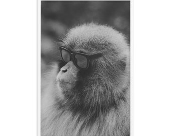 No Monkey Business - Framed poster