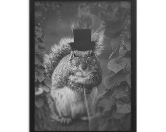 Sir Quirrel / Gentleman Squirrel / Art   Framed poster