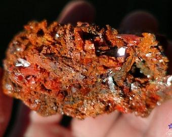 CROCOITE on Matrix - from the Red Lead Mine, Tasmania, Australia