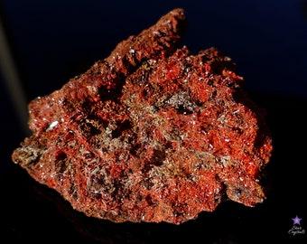 Large CROCOITE CRYSTAL CLUSTER on Matrix - from the Red Lead Mine, Tasmania, Australia
