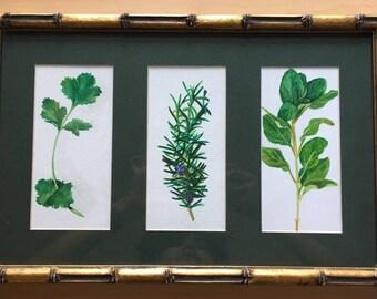Cilantro, Rosemary, and Oregano Watercolor