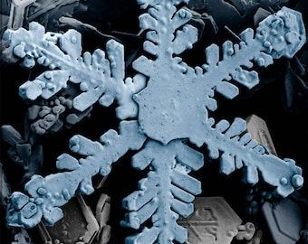 Poster, Many Sizes Available; Snowflake Through Electron Microscope P2