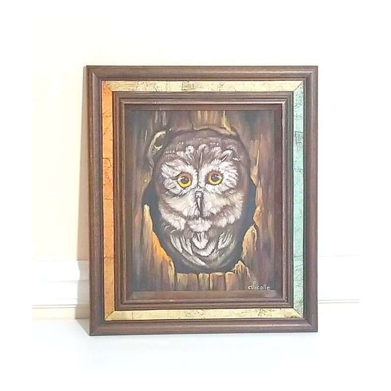 Vintage Framed Owl Painting Artist Signed by C Vicolle image 0