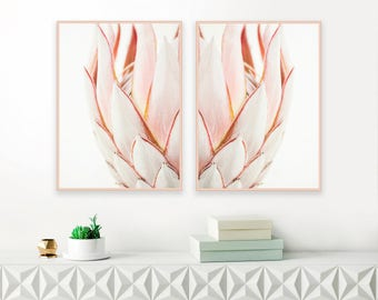 King Protea Prints, Protea Print Set, Blush Pink Wall Art, Protea Poster, Nursery Printable, Above Bed Decor, Floral Download