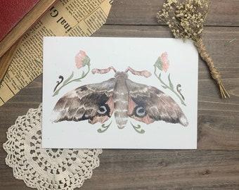 Pink Moth Botanical Watercolor Print