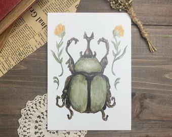 Green Beetle Botanical Watercolor Print