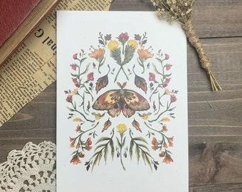 Autumn Moth Botanical Watercolor Print