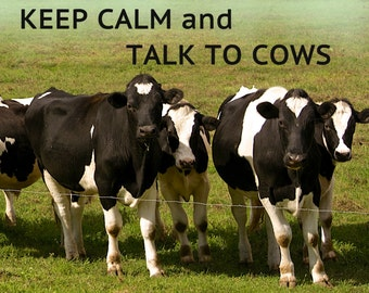 Teeburon Keep Calm and Love Schleswig Holstein Hoodie