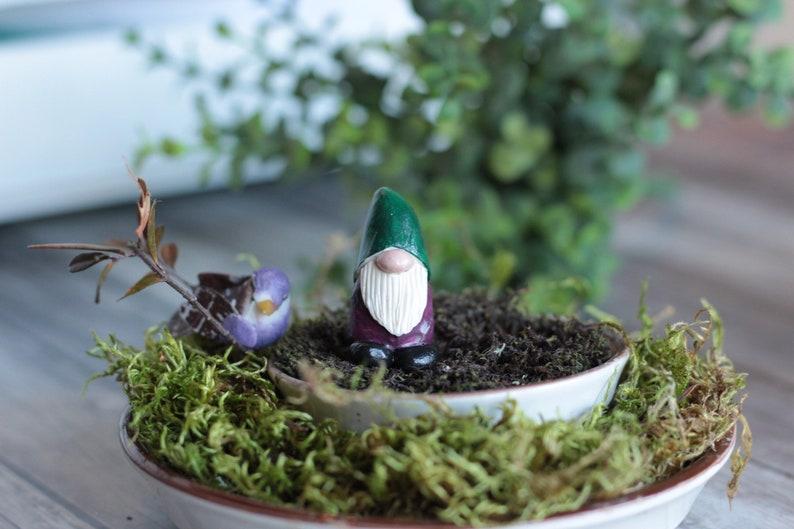 Fairy Garden Tiny Gnome Gnome Mini Polymer Clay Terrarium. image 0