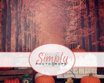 Vinyl Photography Backdrop FALL PUMPKIN STAND All In One Photography Backdrop  SimplyPhotodrops Premium vinyl backdrop