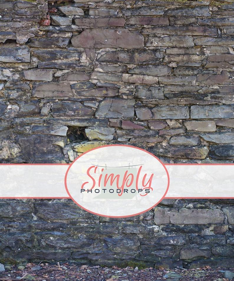 Vinyl Backdrop RUGGED ROCK WALL vinyl Photography Backdrop