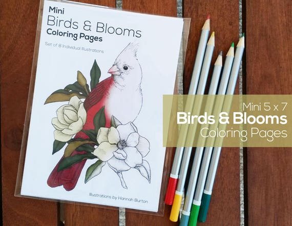 Items Similar To Coloring Pages Birds Blooms 5x7 On Etsyrhetsy: Coloring Pages Birds And Blooms At Baymontmadison.com