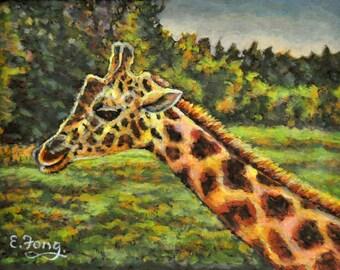 Giraff I Met 2