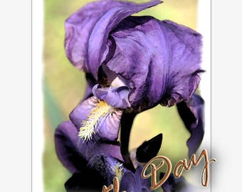 IRIS-greeting cards-istant download