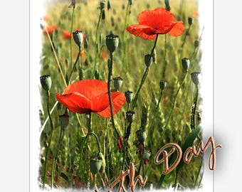 Poppies-greeting cards-istant download